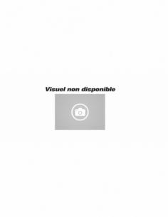 Serrure à encastrer NF V/BR blanc 00061501