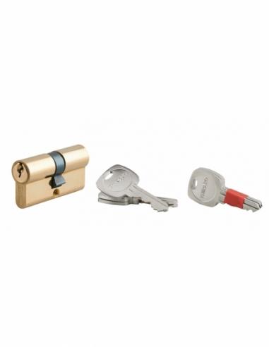 Cylindre de Serrure 30 x 30 mm 2 x 3 clés 00214260