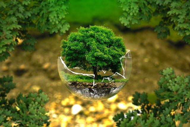 engagement-environnemental